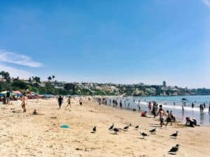 Newport Beach Attractions: The Best of the Best from an Insider's Perspective #EnrichYourSenses