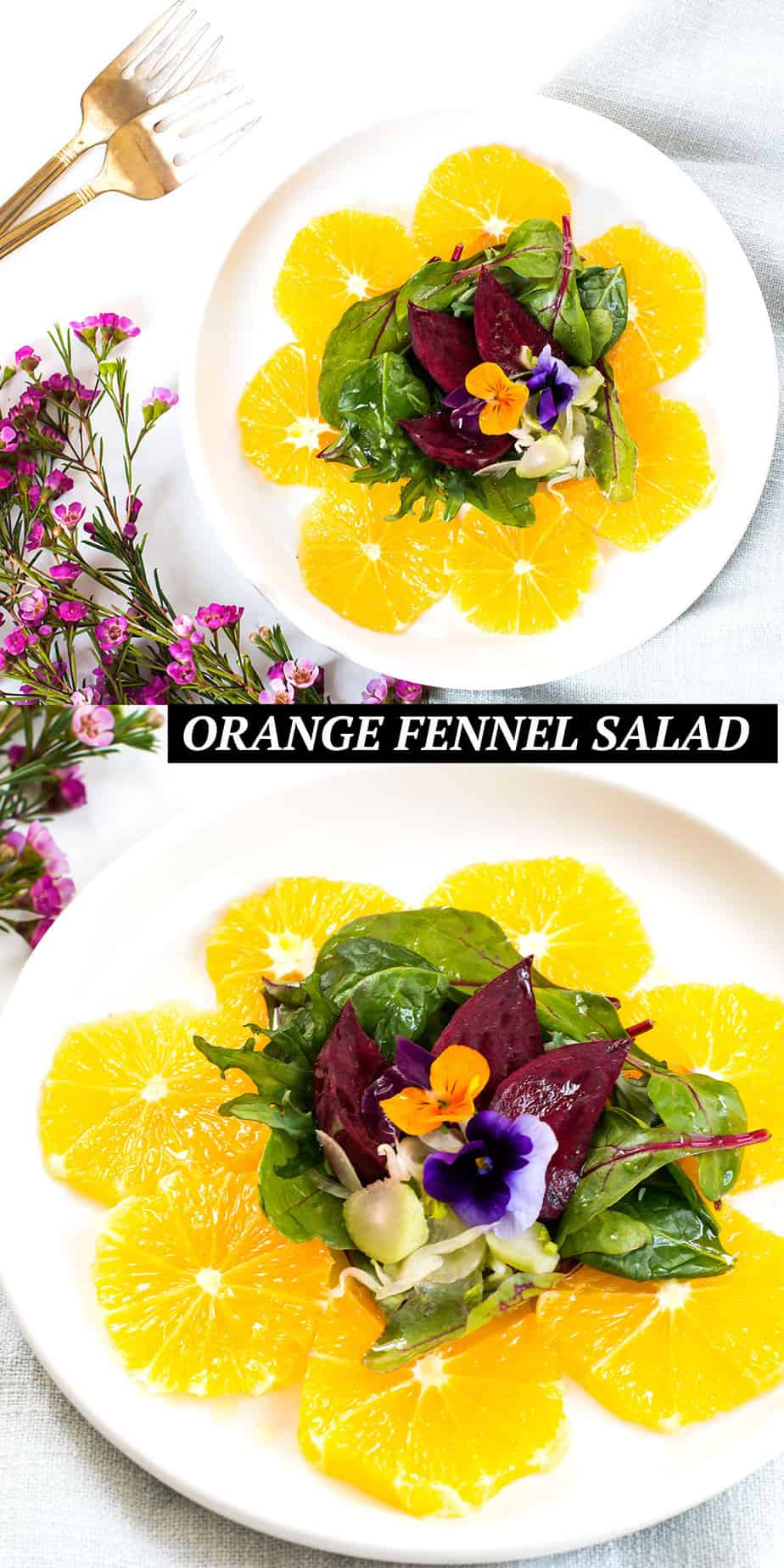 ORANGE-FENNEL-SALAD-RECIPE-PINTEREST