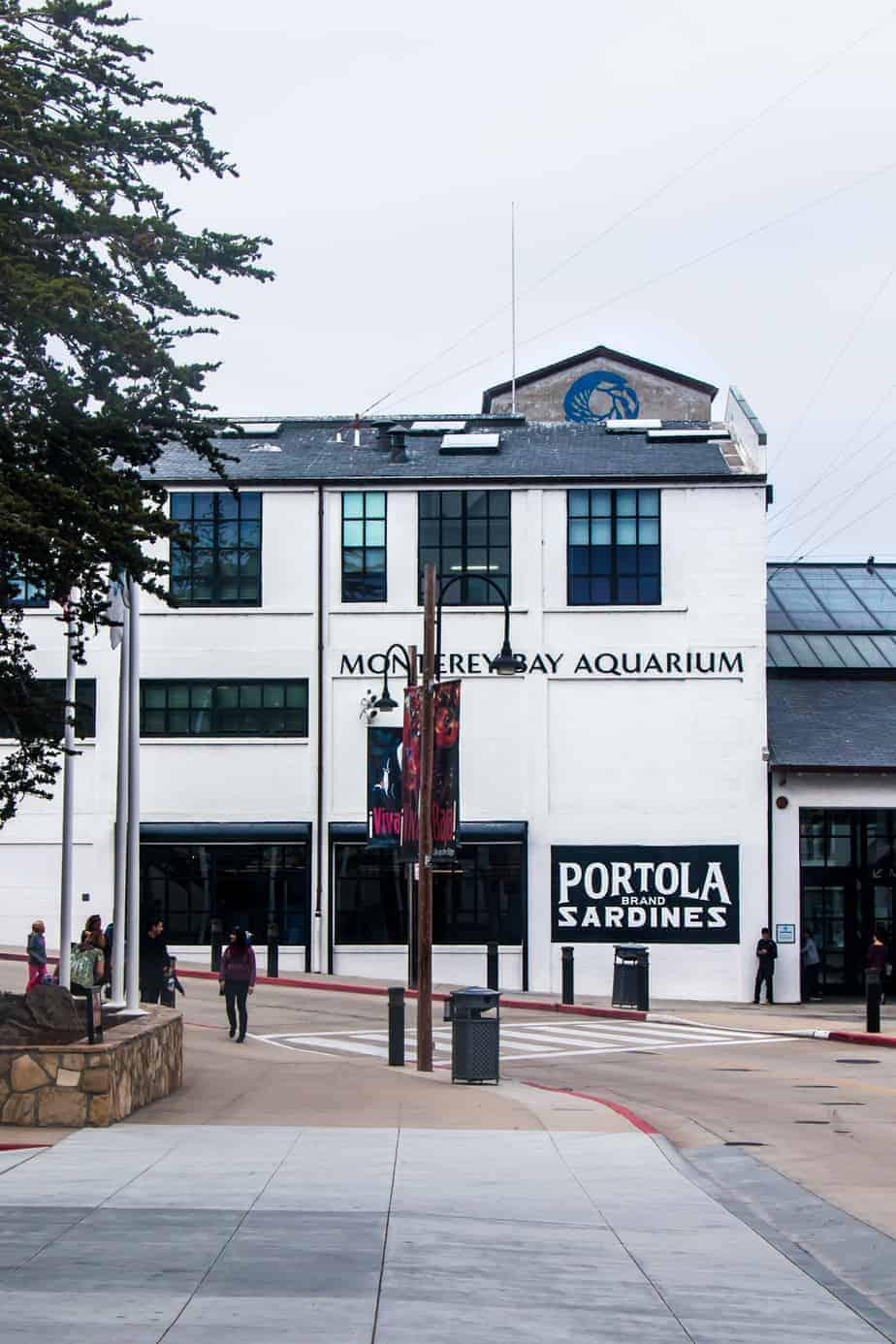 see monterey bay aquarium