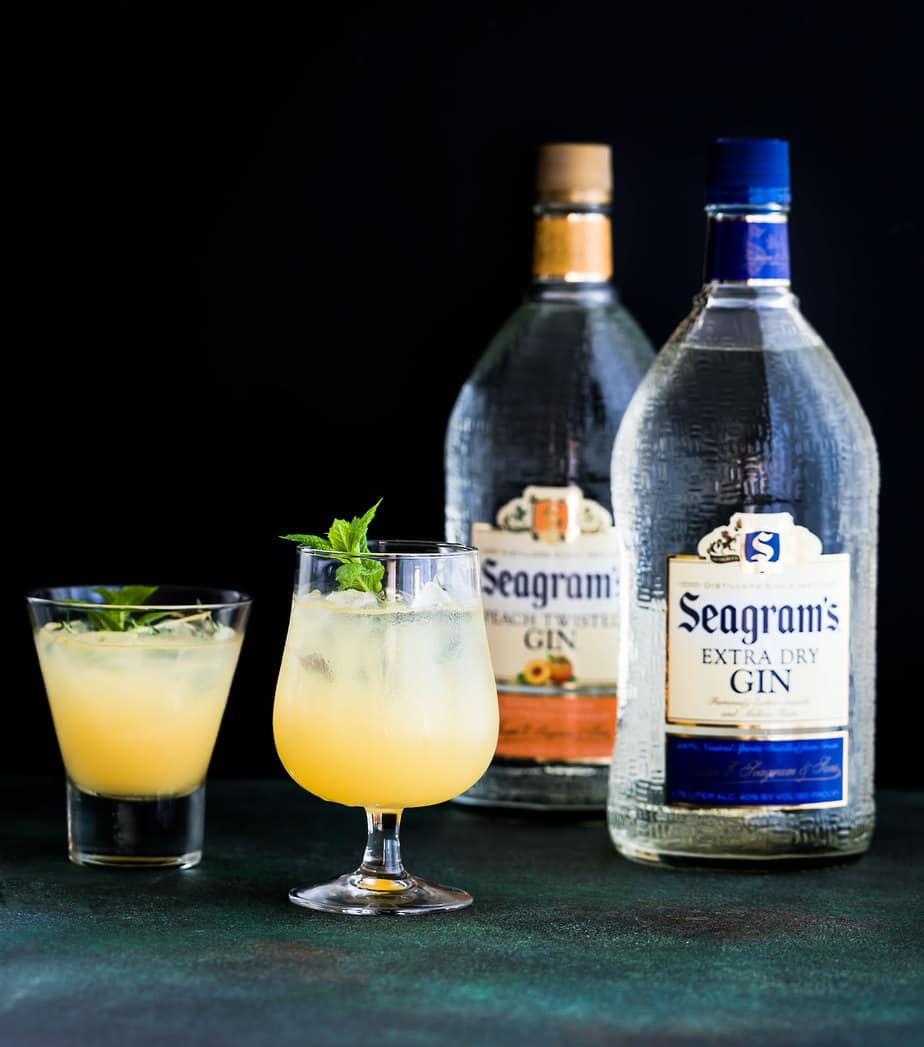 orange gin recipe cocktail seagrams