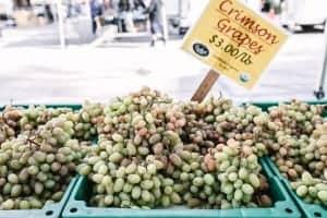 Discover Torrance Farmer's Market