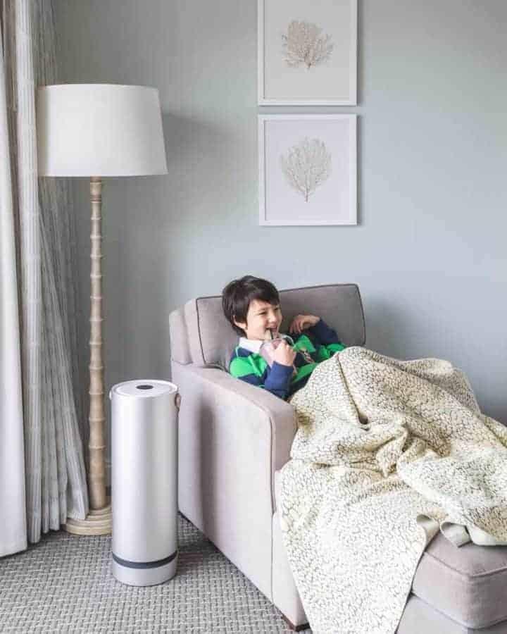 Molekule Air Purifier – Review for Allergies