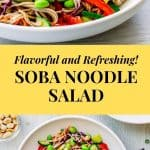 Soba Noodle Salad Recipe Pinterest