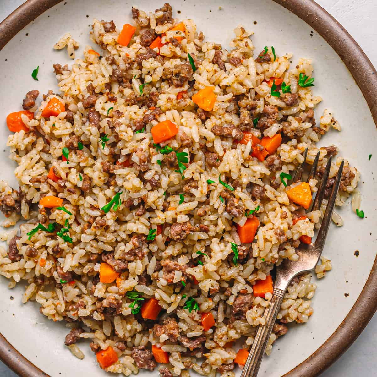 Instant Pot Ground Beef and Rice