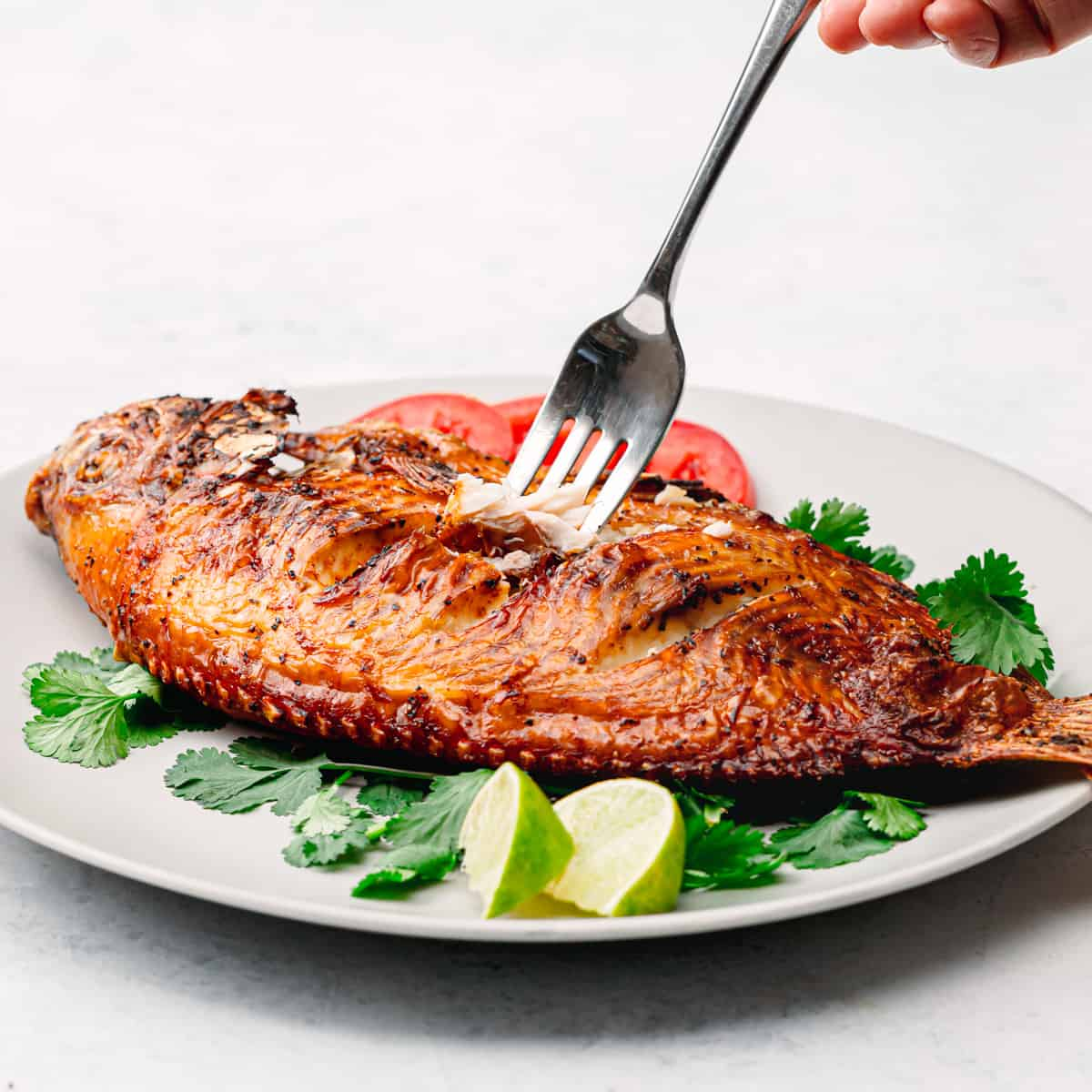 how to cook a tilapia in an air fryer.