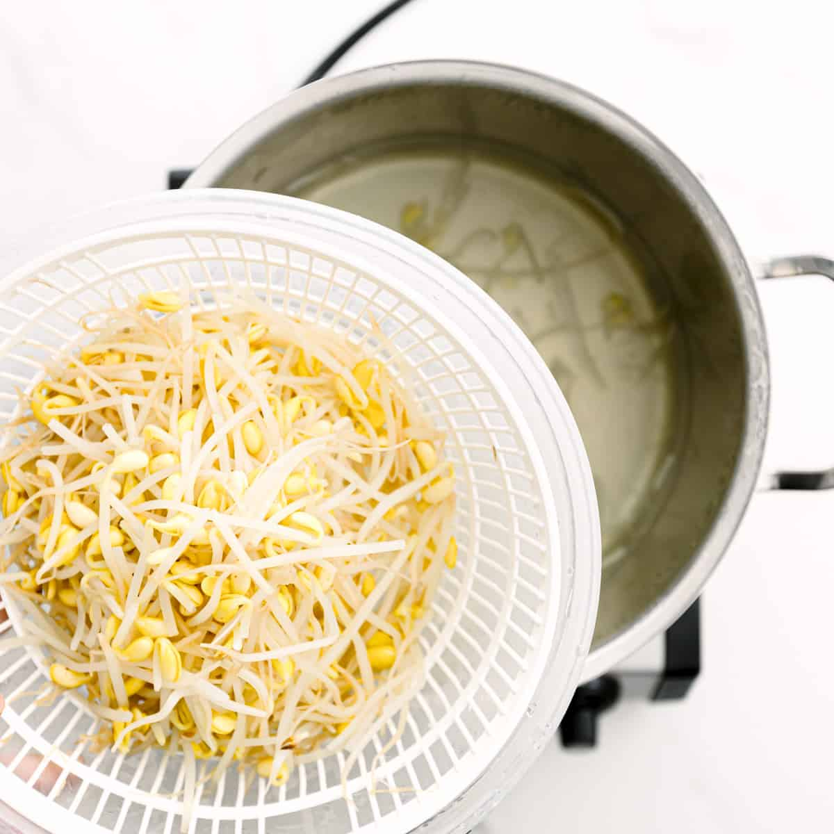 how to blanch bean sprouts.