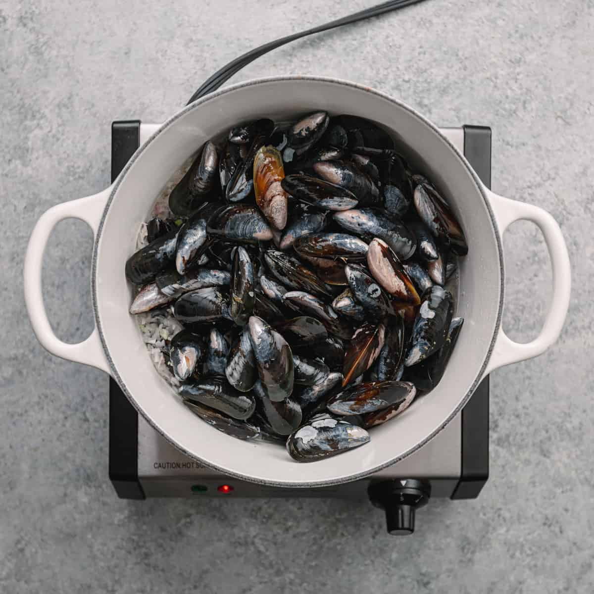 How to make mussels stock.