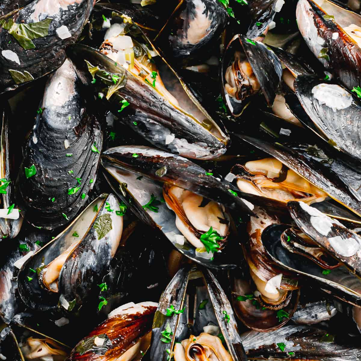 How to cook mussels in white wine sauce.