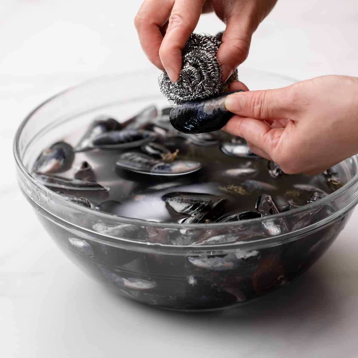 learn how to scrub mussels.