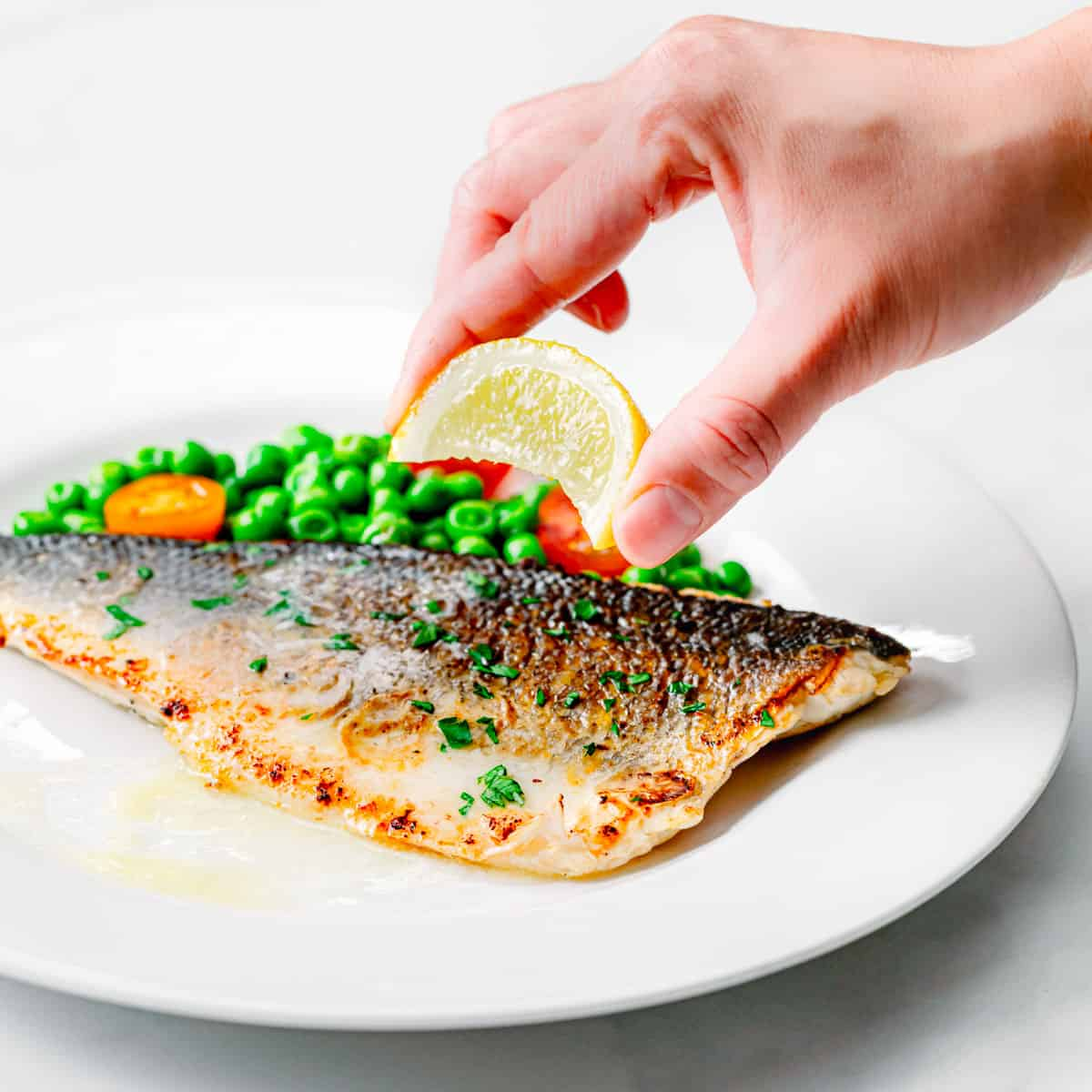 pan-seared branzino fish fillets.
